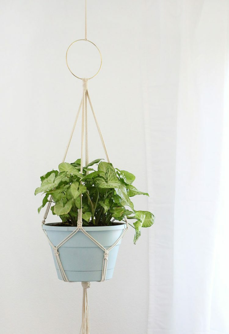 Simple Diy Macrame Necklace: 9 Cheap & Easy DIY Macrame Plant Hangers